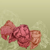 Hand drawn roses on sepia background Stock Photography
