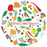 Hand Drawn Round Set with Herbs And Spices. Outline icons Stock Photos