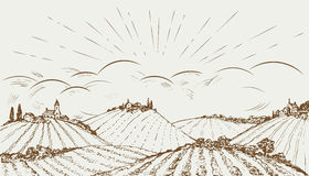 Hand drawn rural field panoramic wide landscape. Vintage vector illustration.  Stock Image