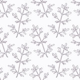 Hand drawn ruta or rue branch outline seamless Stock Photo