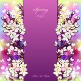 Hand drawn sakura design. Royalty Free Stock Photography