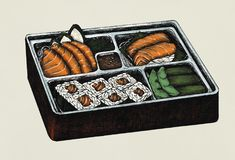 Hand drawn salmon sushi and sashimi bento Royalty Free Stock Photo