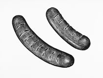 Hand-drawn sausages isolated on white background Stock Image