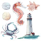 Hand drawn sea clipart. There are lighthouse, seahorse, crab, shell, sand dollar here. It`s perfect for card, poster, scrapbooking design Stock Photos
