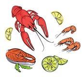 Hand drawn sea food set. Vector Hand drawn colorful sea food set Stock Photo
