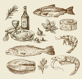 Hand drawn sea food sketch Royalty Free Stock Image