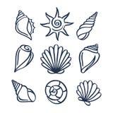 Hand drawn sea shells set. Vector illustration. stock illustration