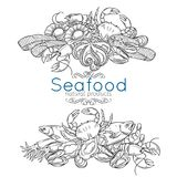 Hand drawn seafood design Royalty Free Stock Photography