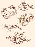 Hand drawn seafood icons Stock Image