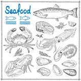 Hand drawn seafood Stock Photo