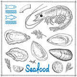 Hand drawn seafood Royalty Free Stock Photo