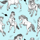 Hand drawn seamless background with horse Royalty Free Stock Photo