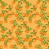 Hand drawn seamless background pattern Mandarin Tangerine inspired by chinese Korean and Japan kimono yukata background backdrop vector illustration