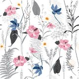 Hand-drawn  seamless botanical pattern with different plan. Ts. Repeated natural background with many flowers on white background Royalty Free Stock Photography