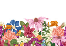 Hand drawn seamless floral border Stock Image