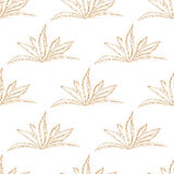 Hand drawn seamless floral pattern with orange flower. On white background. Vector illustration Stock Image