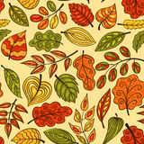 Hand-drawn seamless pattern with autumn leaves Stock Image
