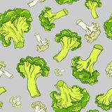 Hand drawn seamless pattern with broccoli and cauliflower on a gray background. Vegetables vector background. Stock Photo