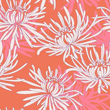 Hand drawn seamless pattern with chrysanthemum Royalty Free Stock Image