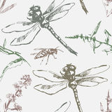 Hand-drawn seamless pattern with dragonfly, wasp and plants. Royalty Free Stock Image