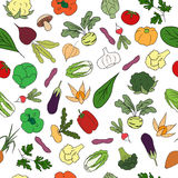 Hand drawn Seamless pattern with fresh vegetables. Fresh Farm Product Stock Photography