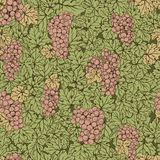 Hand drawn seamless pattern grape background. Green leaves, pink bunches. Food and drinks Stock Image