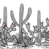 Hand drawn seamless pattern with jars, saguaro, blue agave, and and prickly pear.   Royalty Free Stock Photo