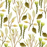 Watercolor hand painted seamless pattern royalty free illustration