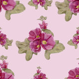 Hand-drawn seamless pattern with mallow flowers. Gentle pattern with hollyhock flowers and leaves Stock Images