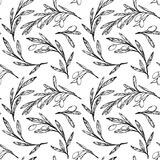 Hand drawn seamless pattern - Olive trees. Vintage background. Stock Image