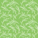 Hand drawn seamless pattern - Olive trees. Vintage background Stock Images