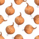 Hand drawn seamless pattern of onions Royalty Free Stock Photography