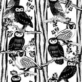 Hand drawn seamless pattern with owls. Black and white doodle birds drawn on the tile texture. Template for wrapping, scrapbook paper, web background and Royalty Free Stock Photos