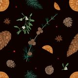 Hand drawn seamless pattern with parts of Christmas plants on black background - mistletoe, branches of coniferous trees. Cones, orange slices, star anise Royalty Free Stock Photo