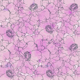 Hand drawn seamless pattern peony flowers Royalty Free Stock Photography