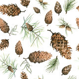 Hand-Drawn seamless pattern with pine cones and branches of coniferous evergreen tree. Design decor background. Card. Illustration Stock Photos
