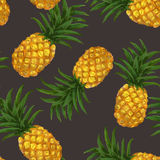 Hand drawn seamless pattern with pineapple in Stock Image