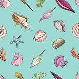 Hand drawn seamless pattern with seashells. Vector colorful background. vector illustration