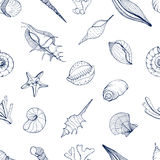 Hand drawn seamless pattern with seashells. Vector monochrome background. Stock Photography