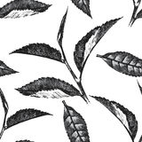 Hand drawn seamless pattern with tea leafs Royalty Free Stock Photo