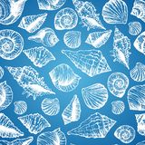 Hand drawn seamless pattern with various seashell Stock Images