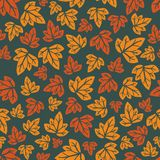 Hand-drawn seamless pattern. Vector illustration. Colourful leaves. Doodle style Stock Images