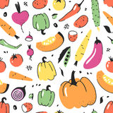 Hand drawn seamless pattern with vegetable. Vector artistic drawing food. Summer illustration red onion, pumpkin, potato Stock Image