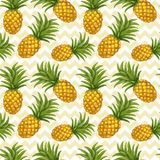 Hand Drawn Seamless Pattern With Pineapple Royalty Free Stock Photography