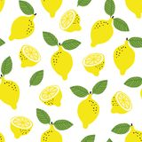 Hand drawn seamless pattern with yellow lemon fruit and leaves. Summer retro fabric design, cartoon illustration, vector Stock Photography