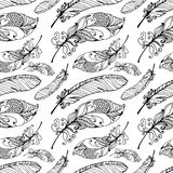 Hand Drawn Seamless Plumage Pattern. Black and White Endless Feather Background Royalty Free Stock Images