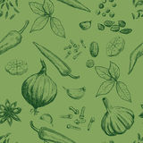 Hand drawn seamless set of organic spices Royalty Free Stock Images