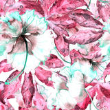 Hand drawn seamless watercolor exotic pattern with passiflora leaves and hibiscus flowers. Stock Image