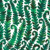 Hand drawn seamless watercolor pattern of green fern branches stock illustration