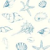 Hand-drawn Seashells Stock Images